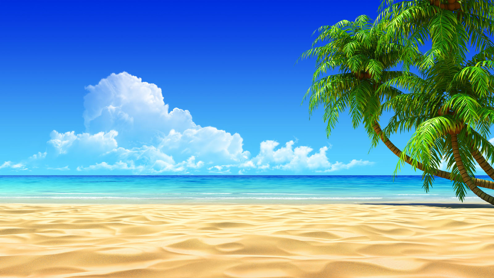 ... beach wallpaper ...