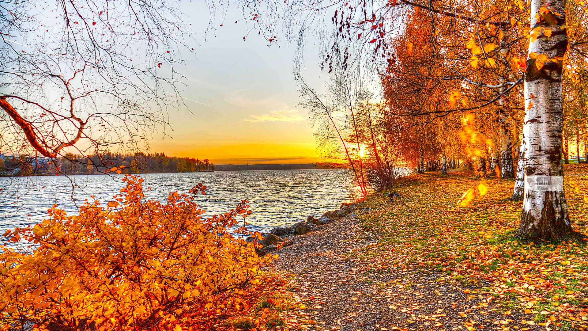beautiful autumn landscape free wallpaper Wallpaper