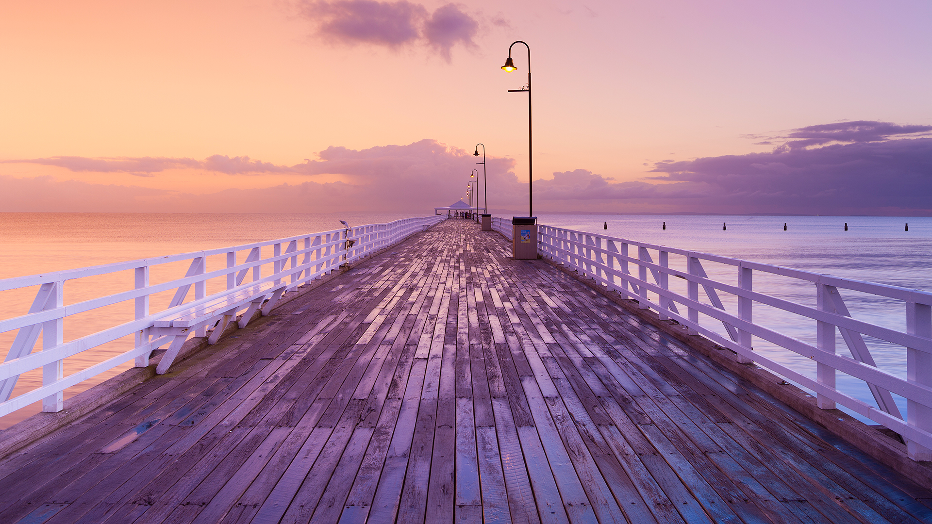 Beautiful Boardwalk