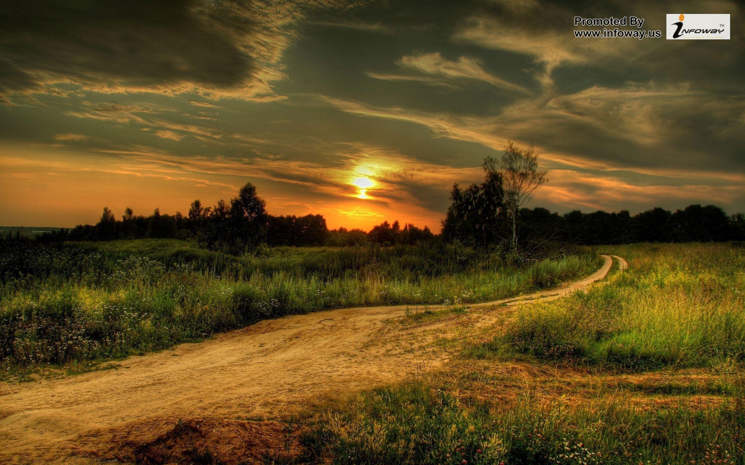 Beautiful Country Sunset