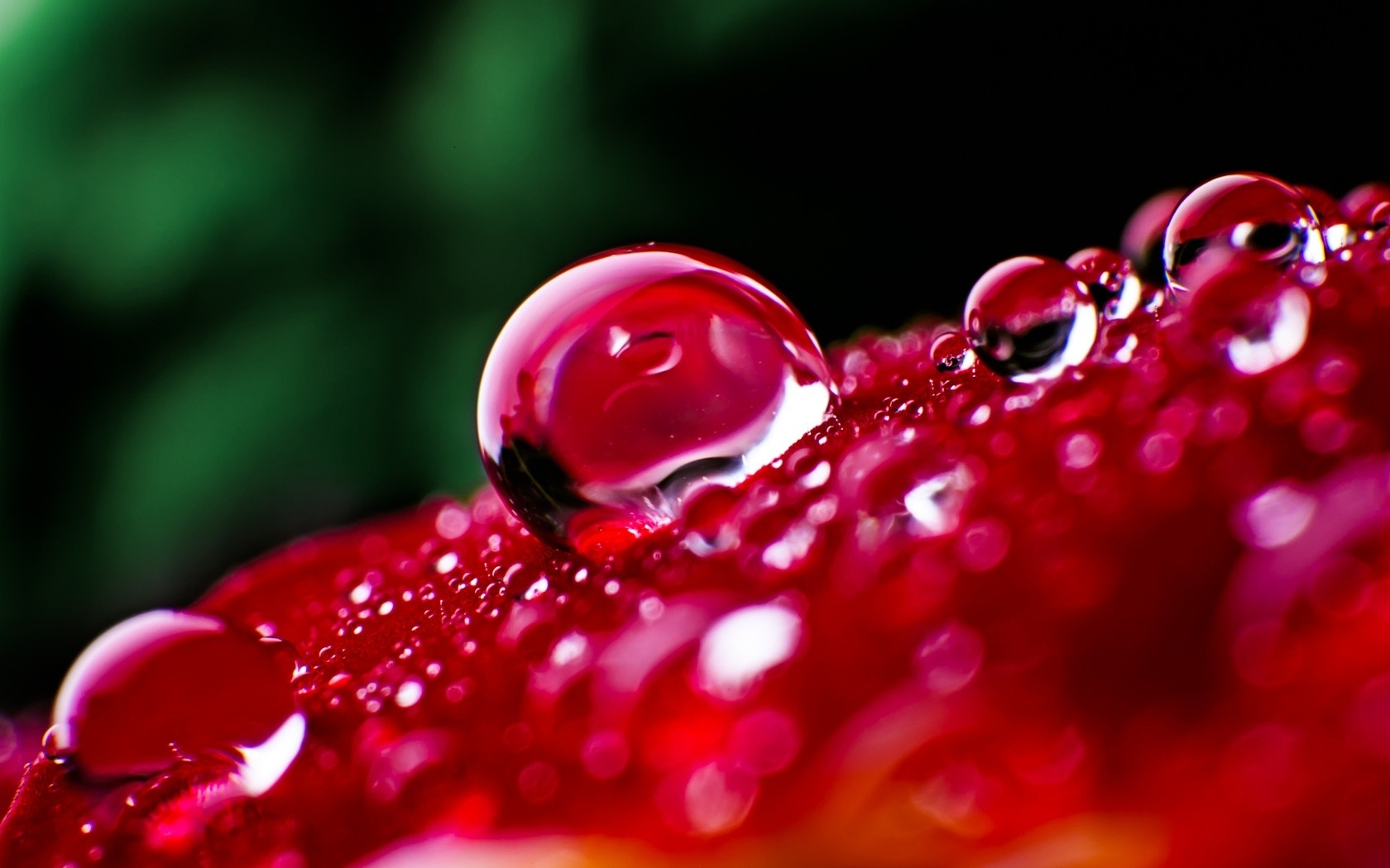 Beautiful Drops Wallpaper