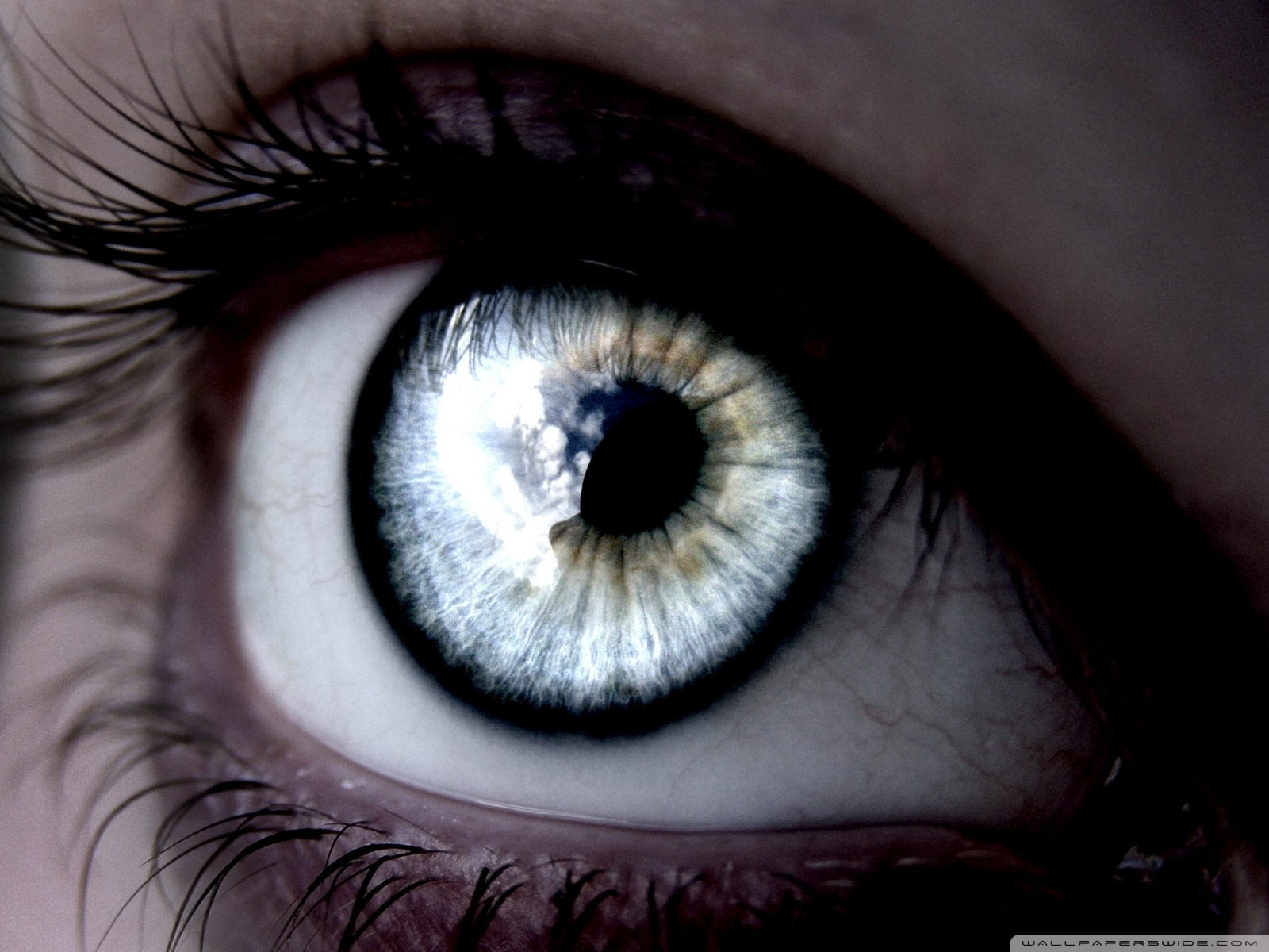 Beautiful Eye Wallpaper