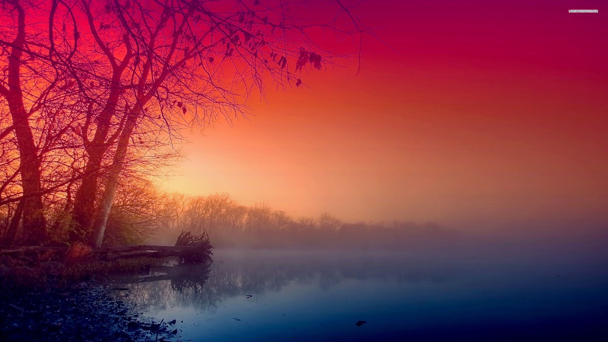 ... Beautiful red morning fog wallpaper 2560x1440 1440p ...