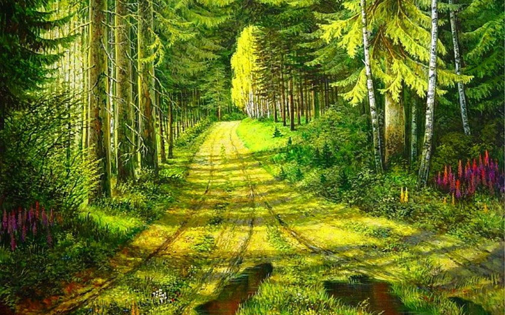 Wallpaper Tags: landscape lovely path nature beautiful green colors forest peaceful sun splendor wood