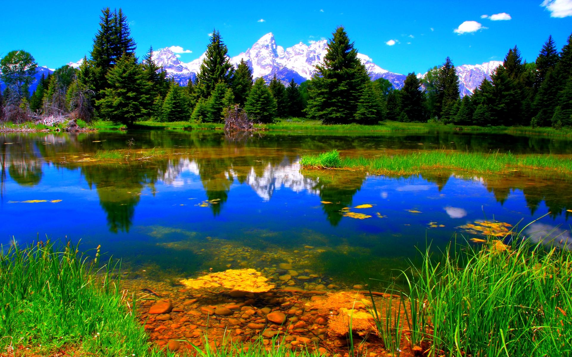 Beautiful Lake Wallpaper