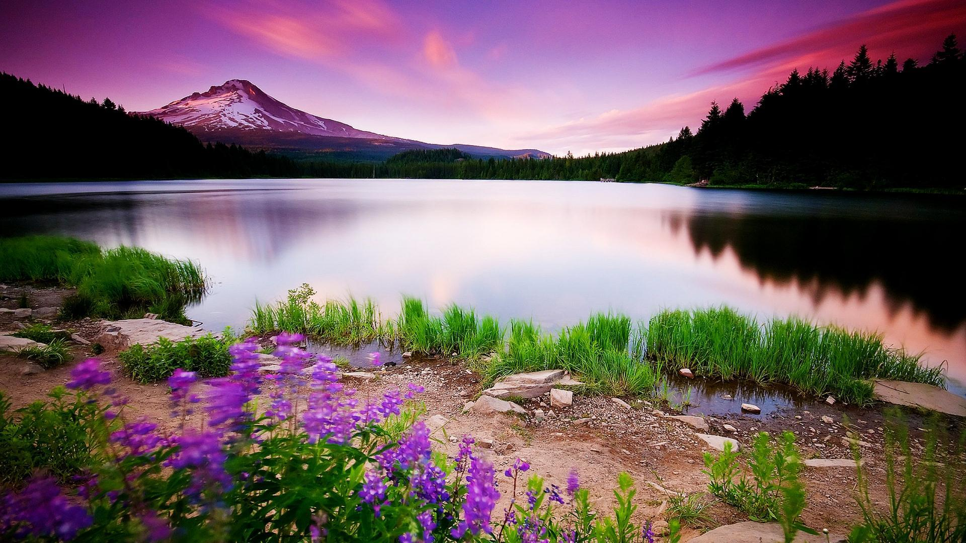 Beautiful Landscape Image Widescreen 2 HD Wallpapers