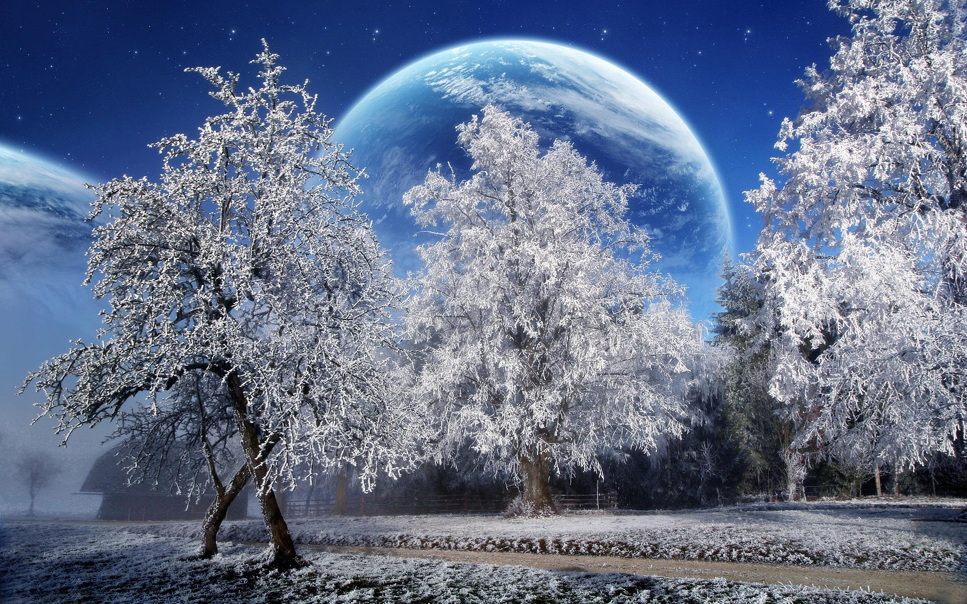 HD A Beautiful Winter With A Big Moon Wallpaper · Mystical Flower Shine