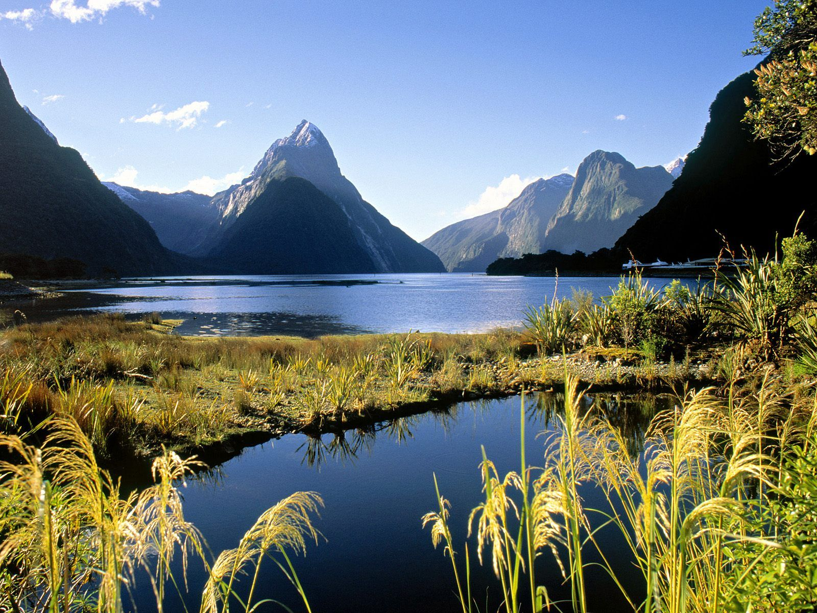 Beautiful New Zealand Wallpaper