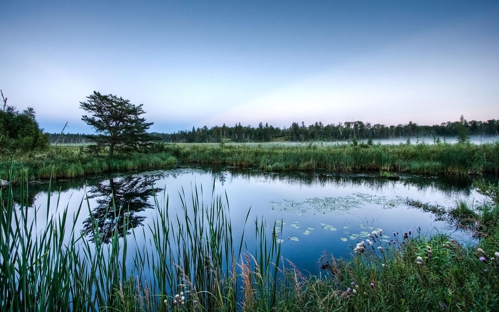 Views: 600 Pretty Pond Wallpaper 21293