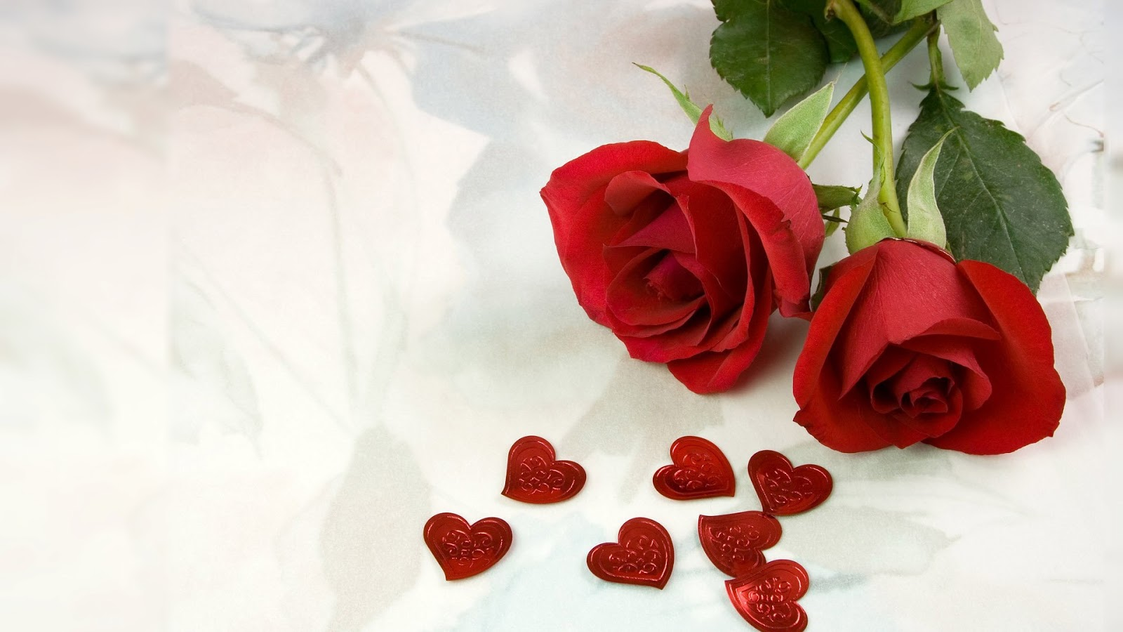 Beautiful Red Flowers Wallpaper