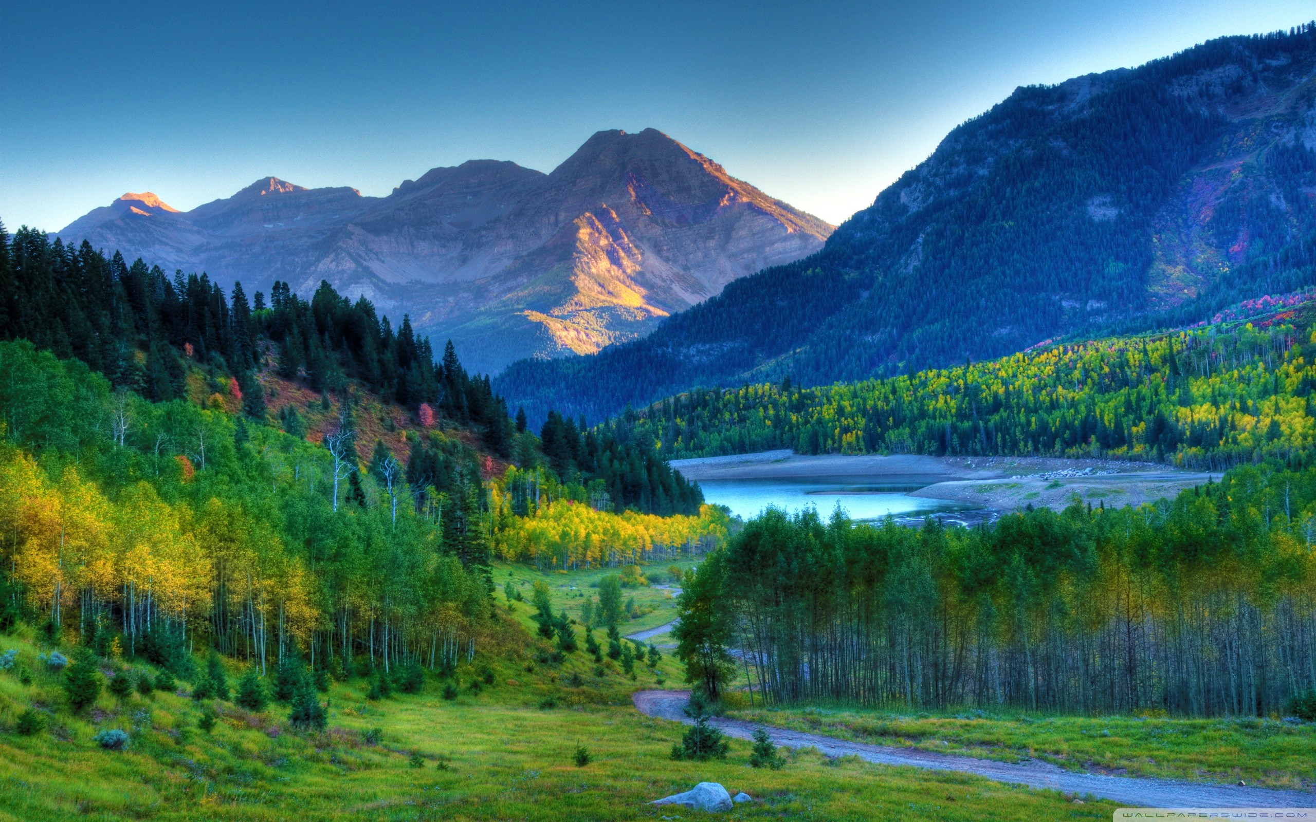 Beautiful Scenery Pictures Hd Background Wallpaper 19   freehighresolutionimages.org