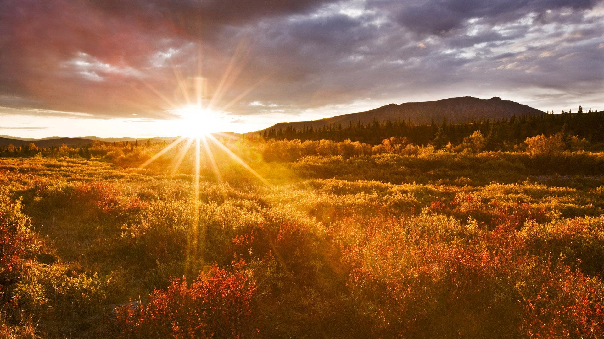 ... Sunrise Wallpaper ...