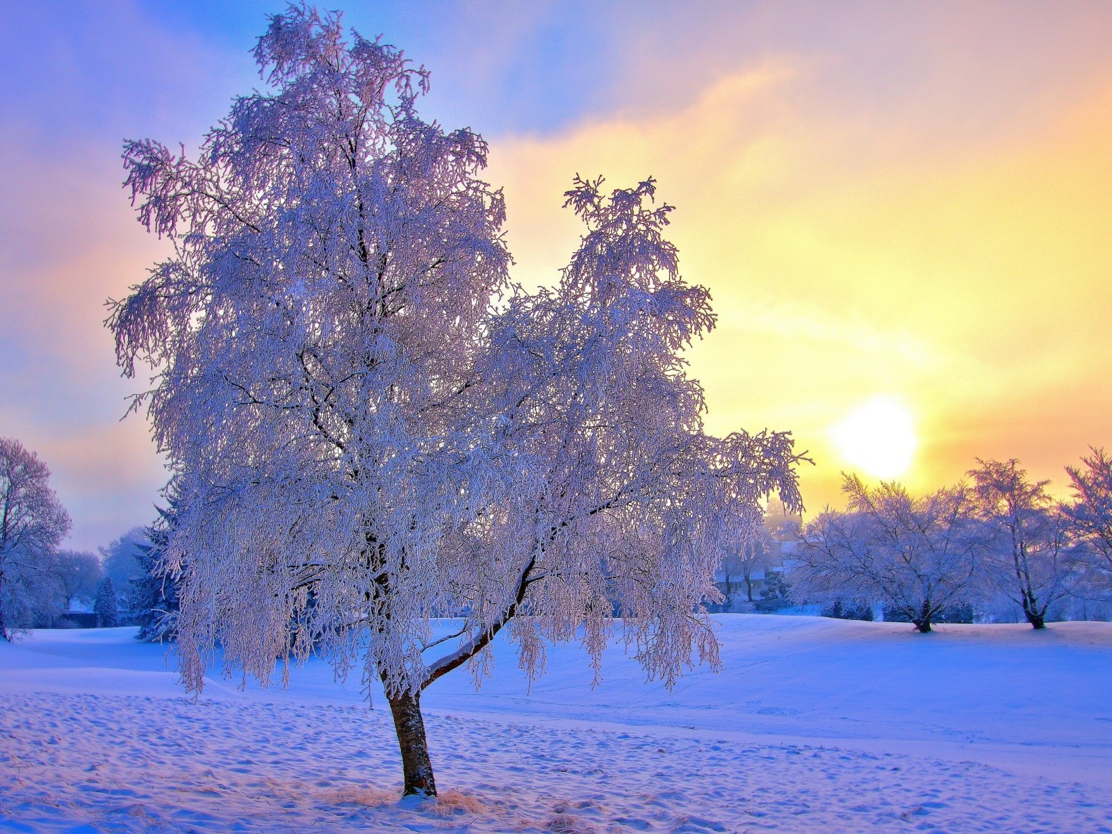 Beautiful Winter Landscape 1600x1200 wallpaper