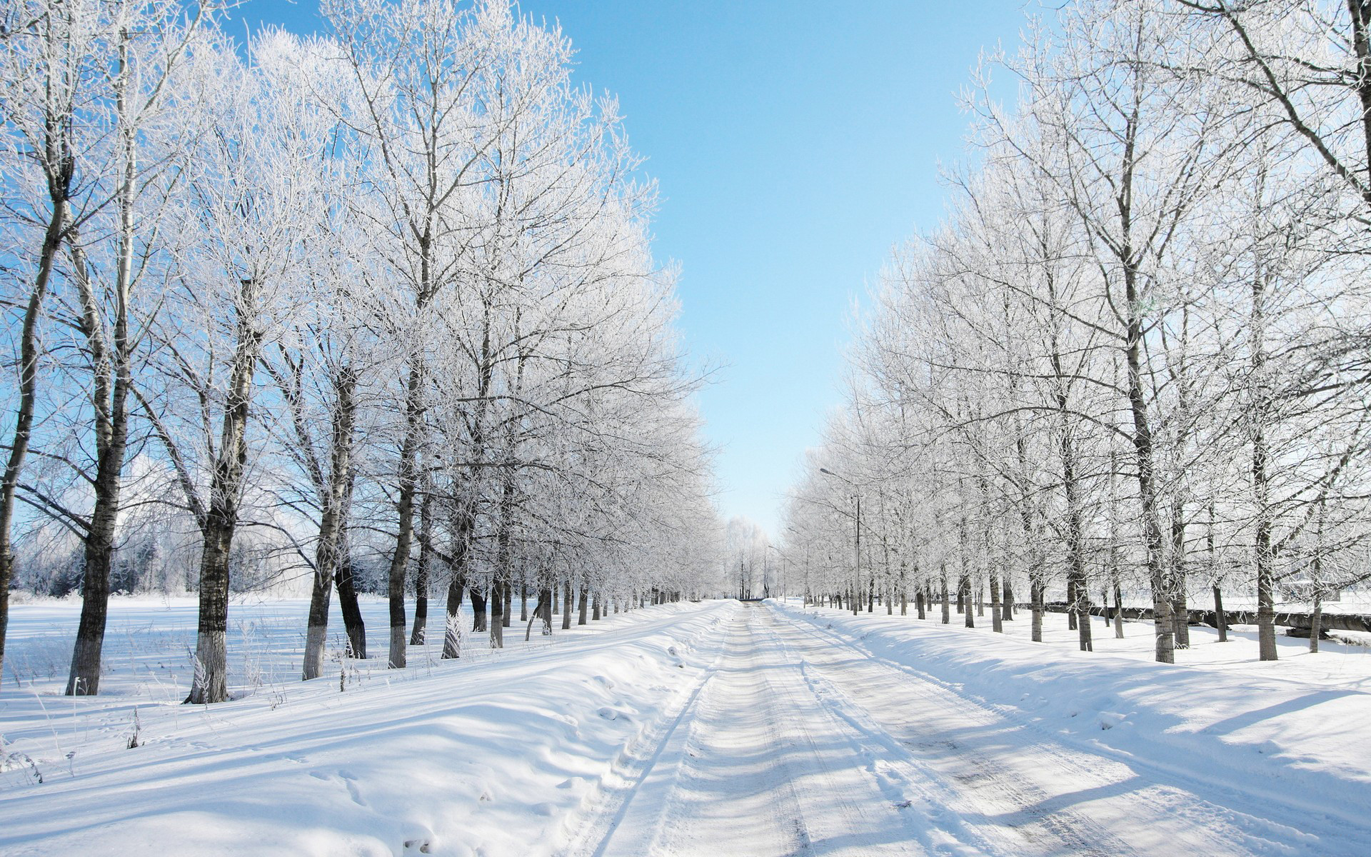 Beautiful Winter Road Wallpaper