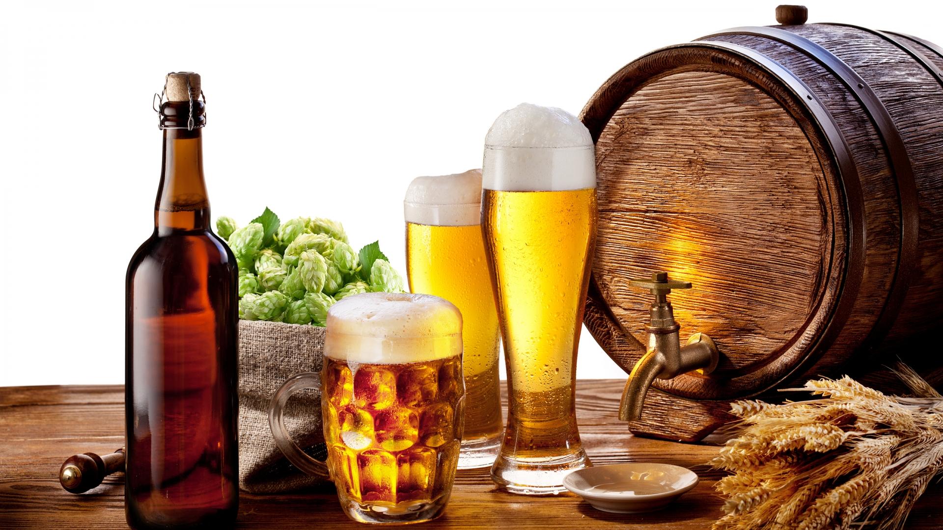 Spotlight on Beer