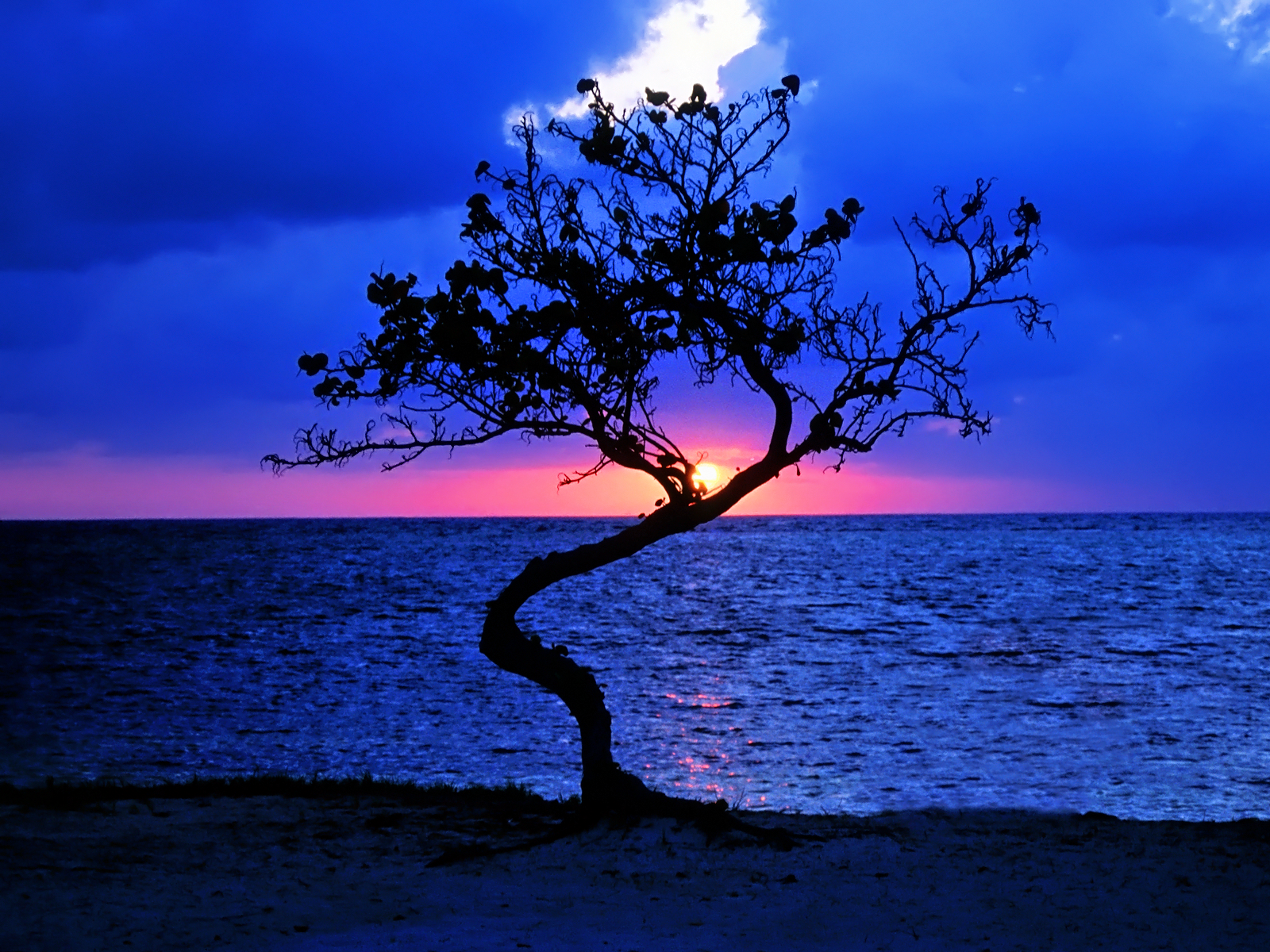 Sunset-in-Belize-Wallpaper