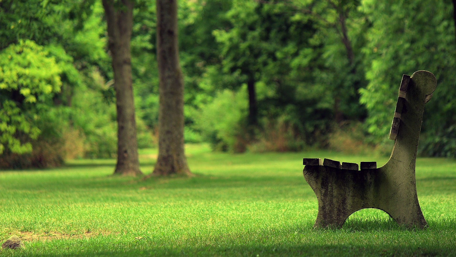 Bench green park