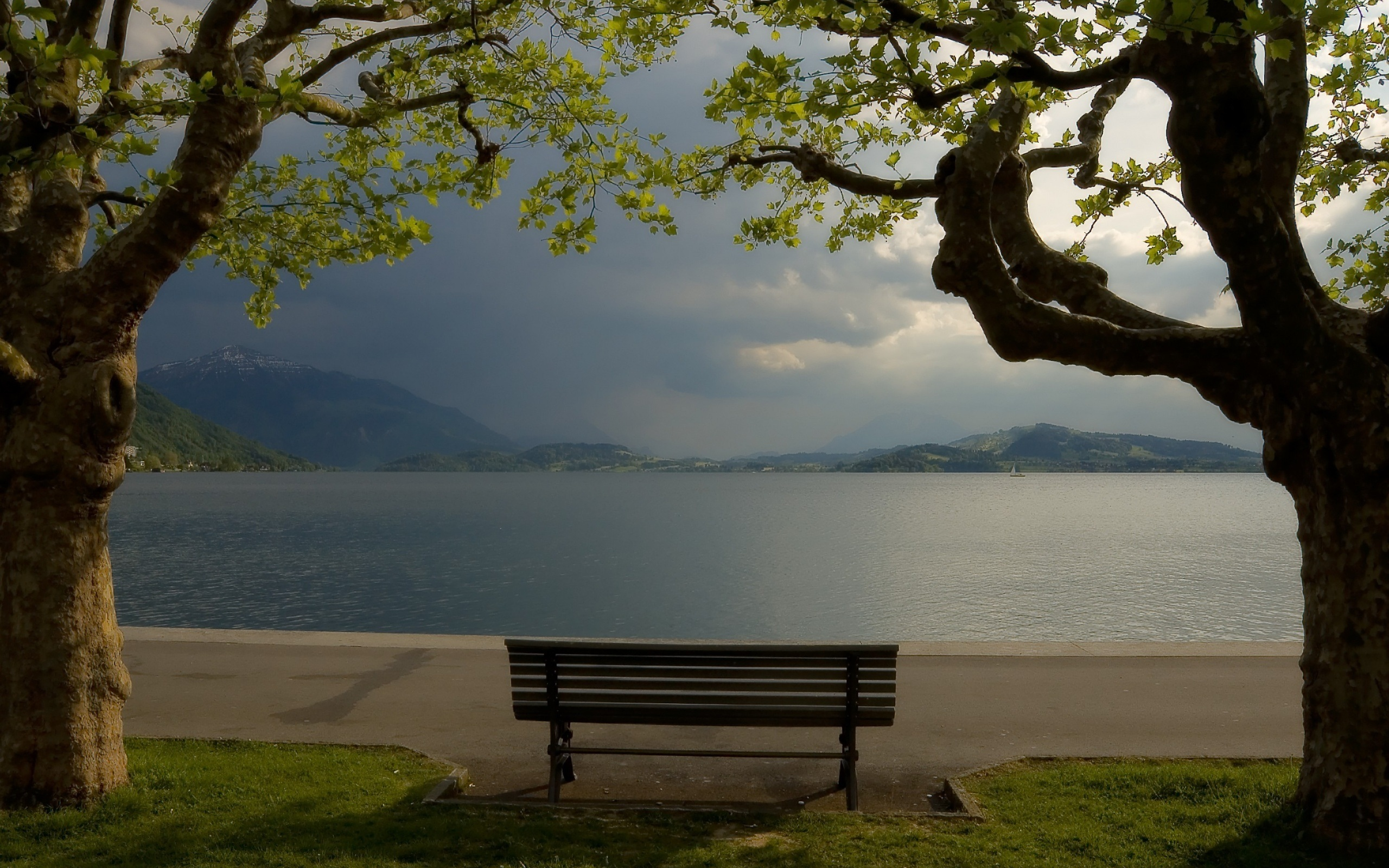 Cloudy Park Bench