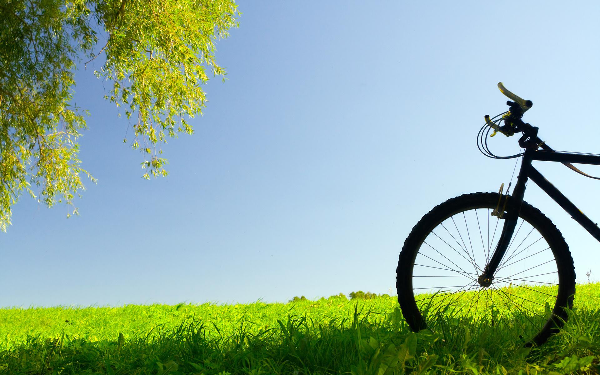 Bicycle Wallpaper 3134