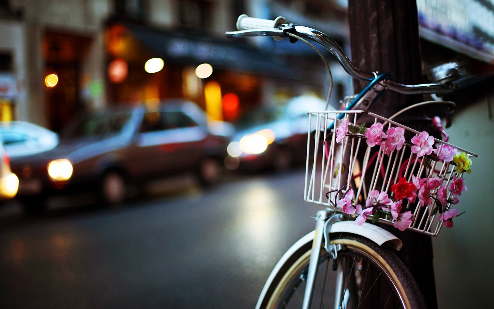 Bicycle Basket Flowers City Evening Lights