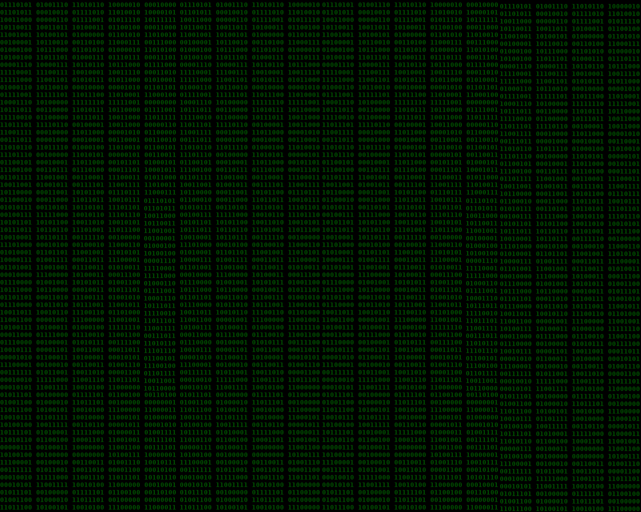 1280x1024 Onur Binary wallpaper