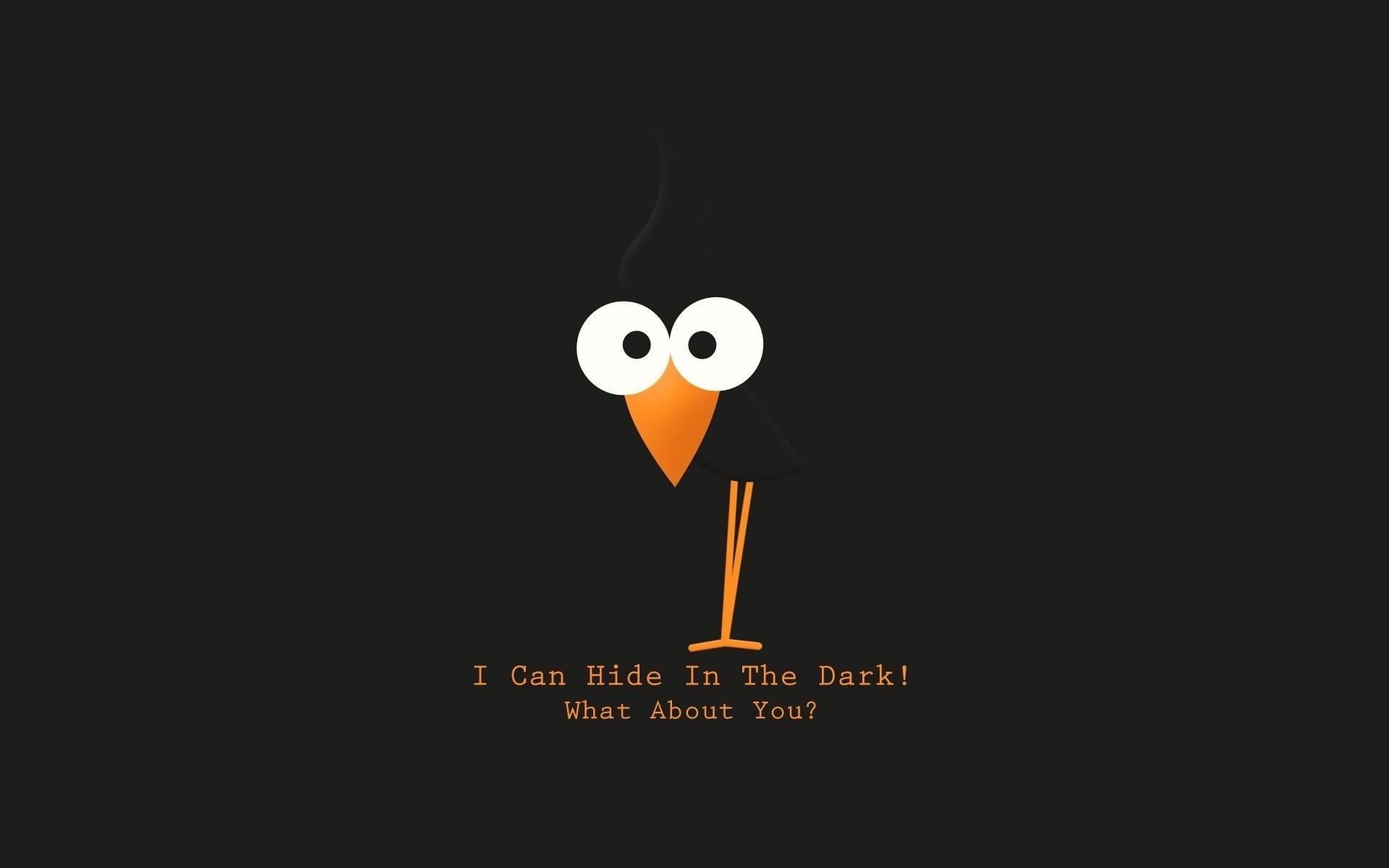 Bird Text Funny
