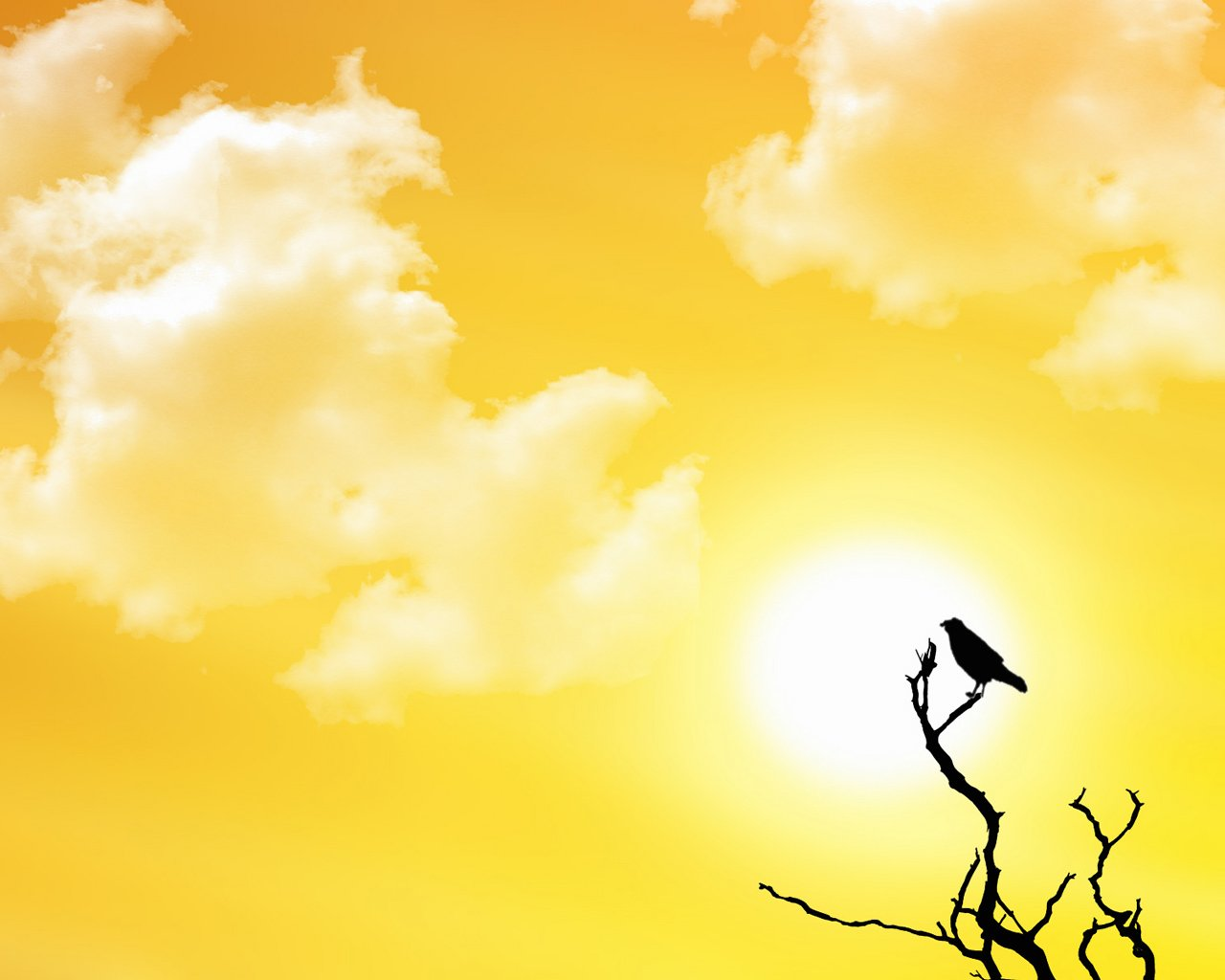 Sun and Bird - Abstract - wallpapers