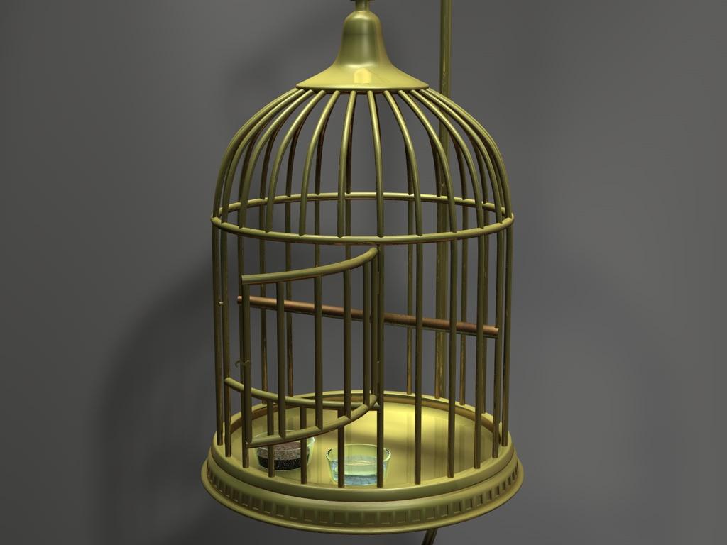 3545-BIRD-CAGE-B.jpg