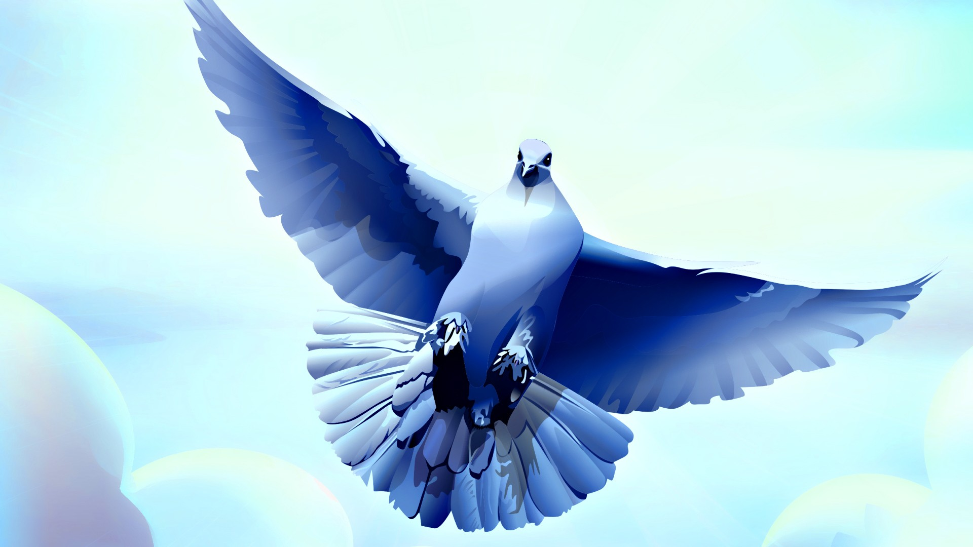 Birds Pigeons Art