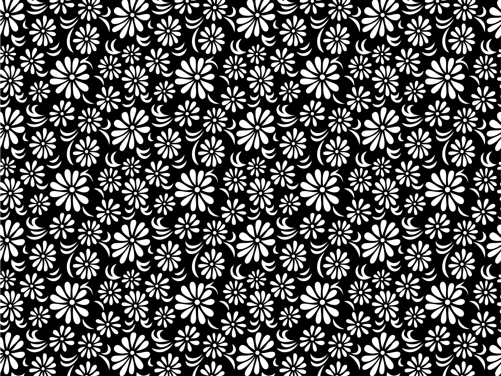 Black and White Floral ...
