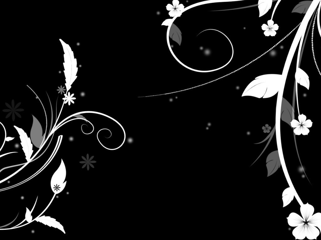 Black And White Floral Wallpaper 1024x768 1265