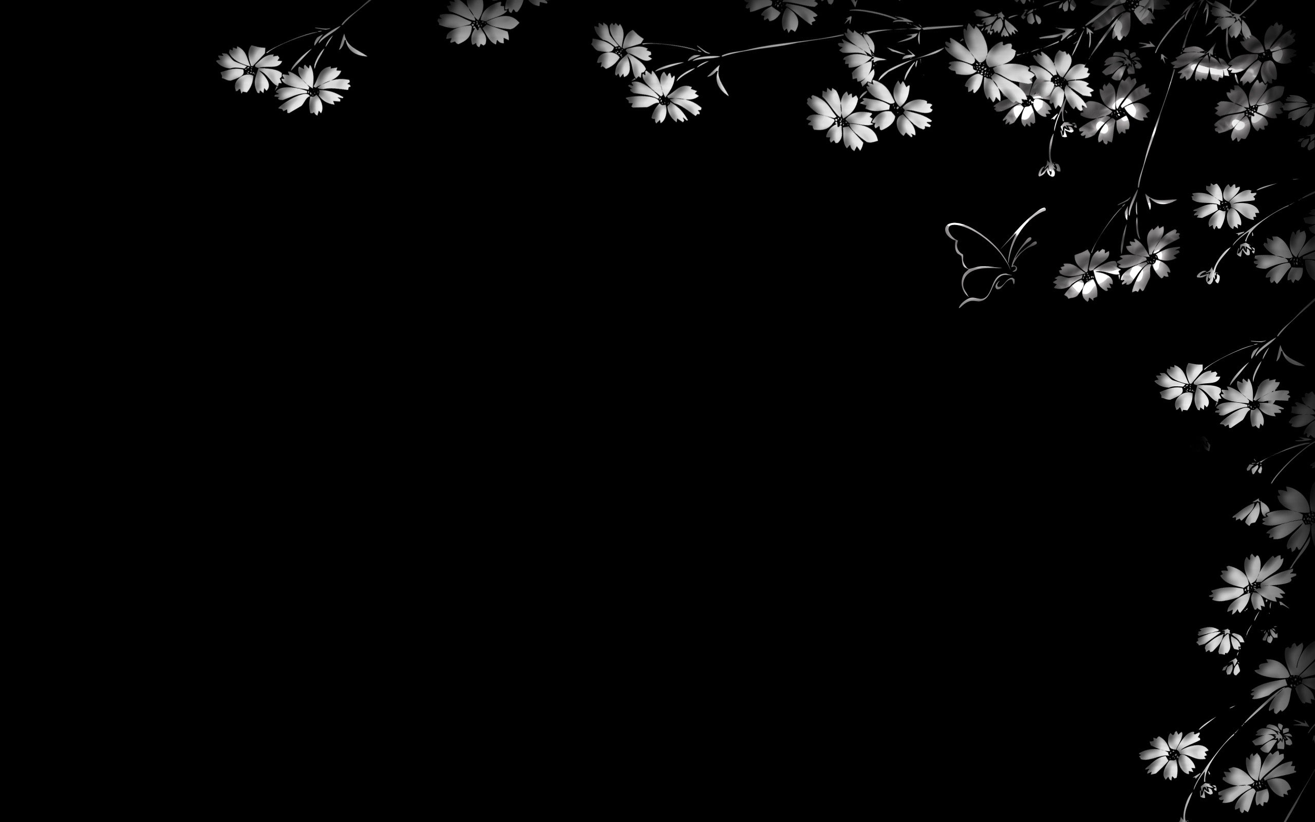 Black And White Floral Wallpaper 2560x1600 57212