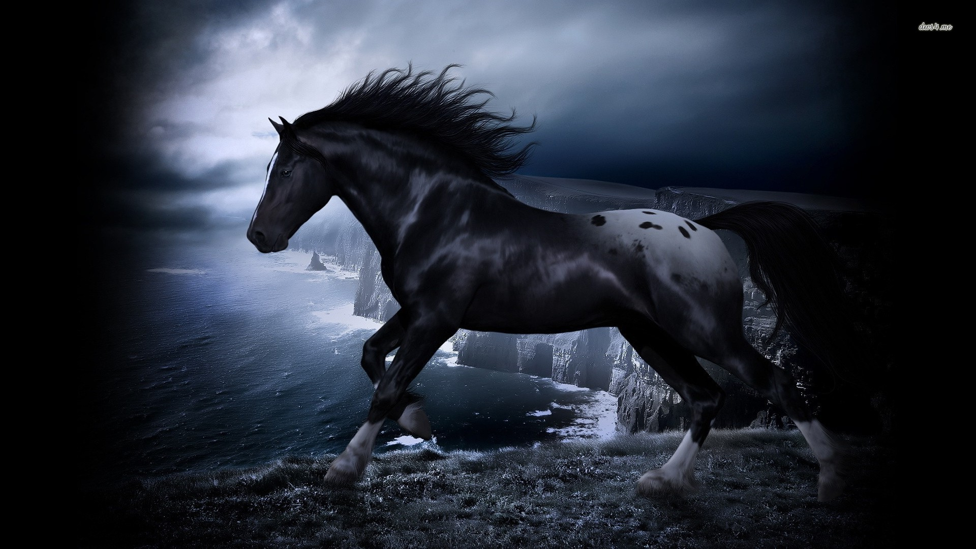 Black Horse Art Wallpaper 1920x1080 11862