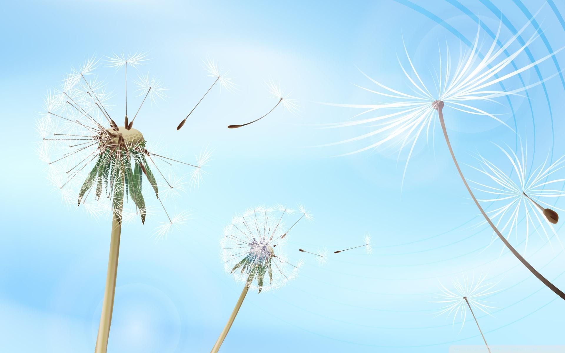 Blowing dandelion art