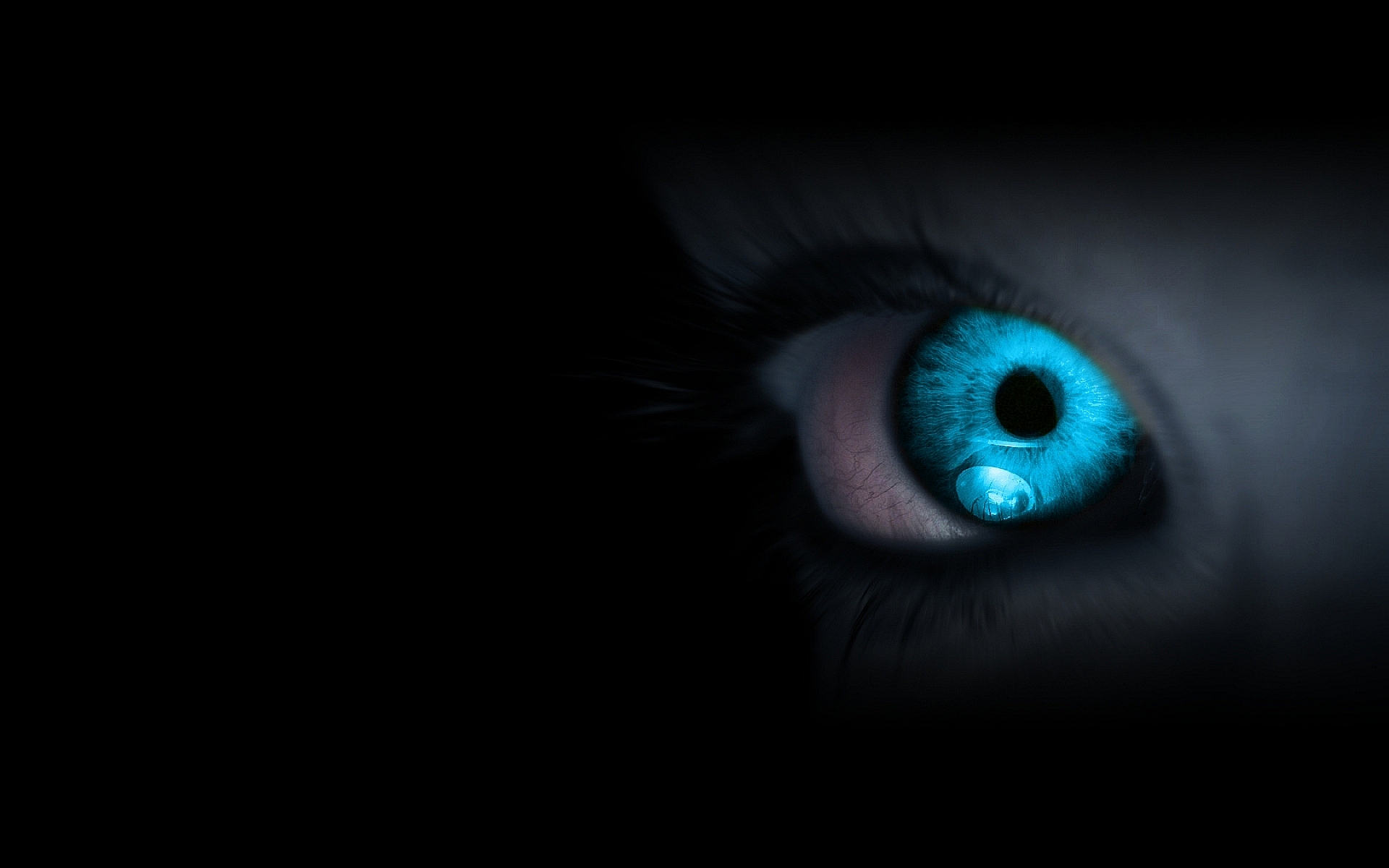 Blue eyes Creature