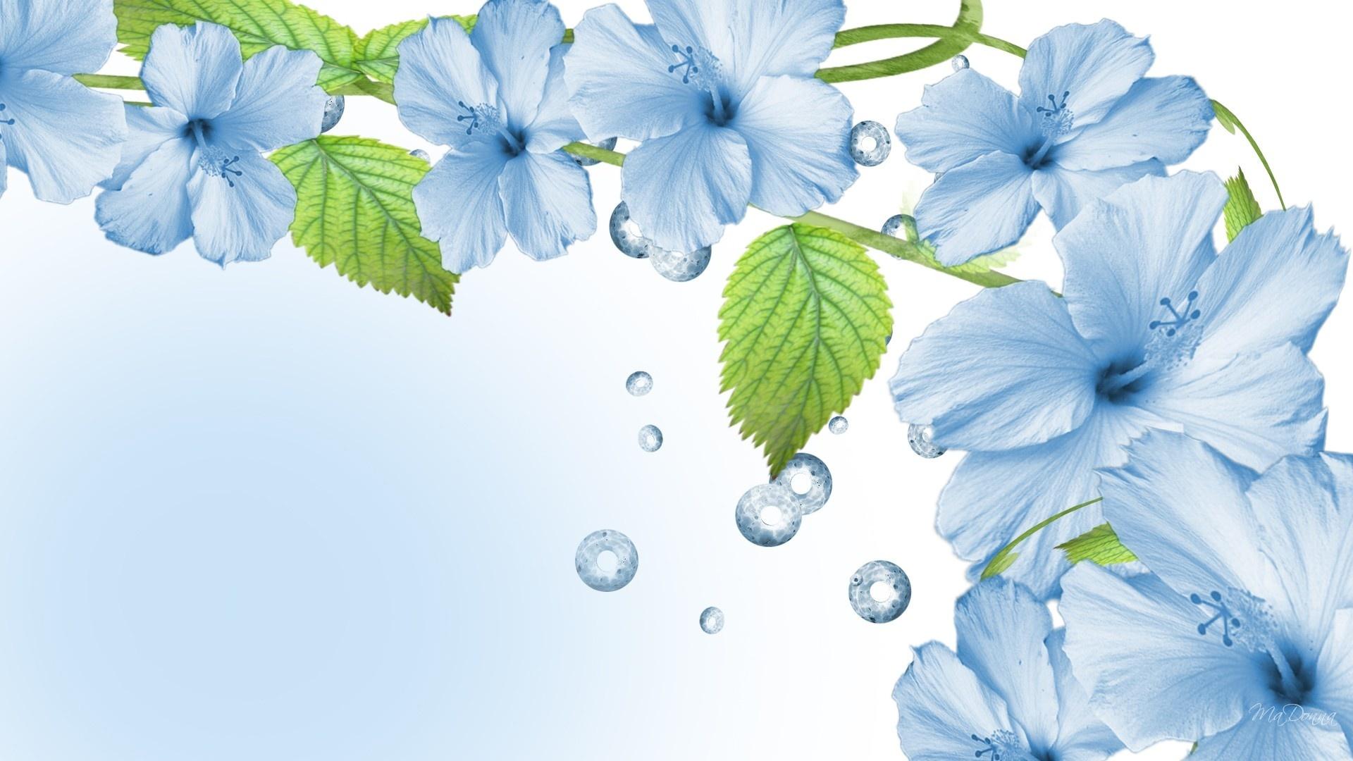 Blue flowers 39