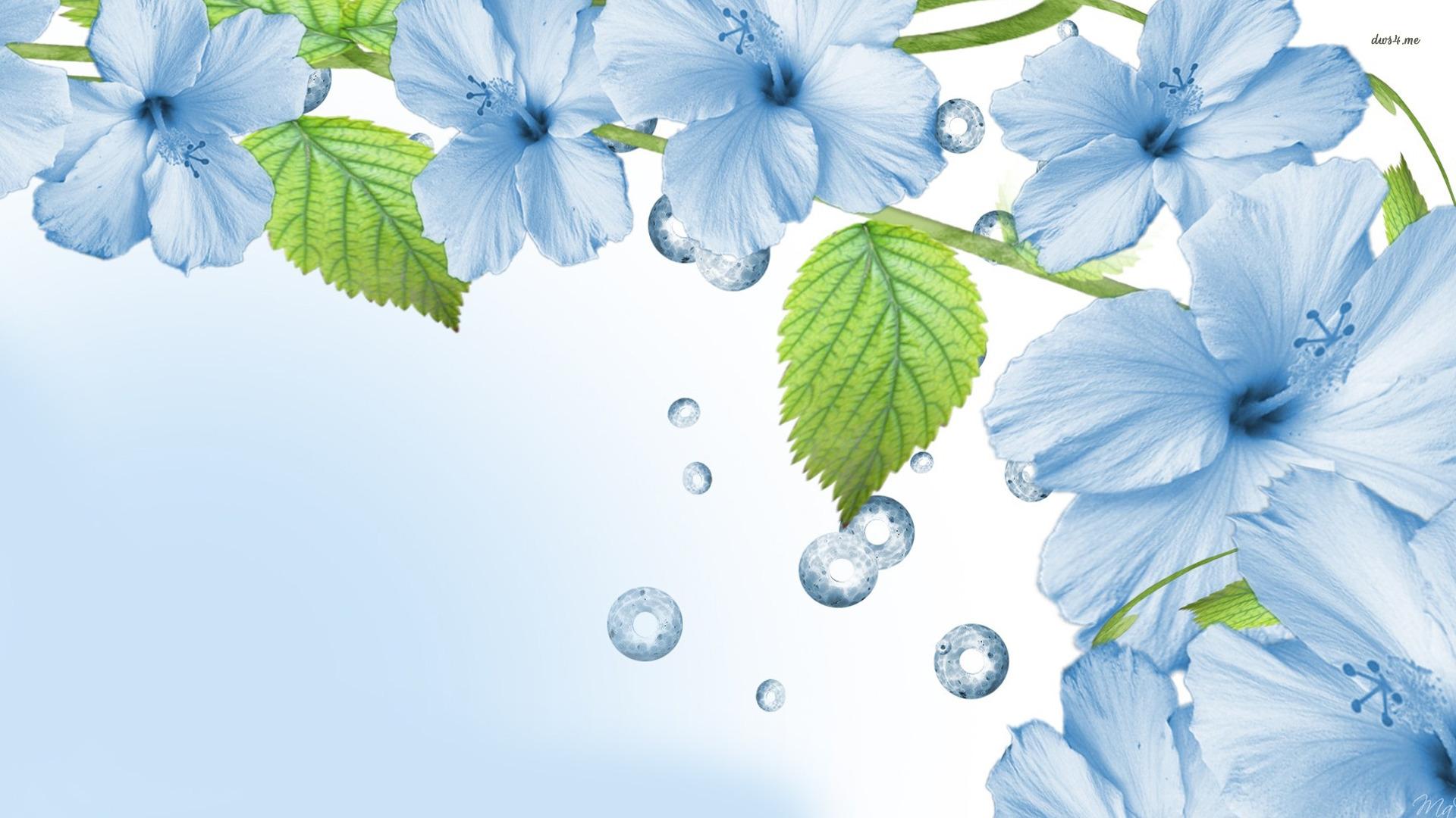 Blue Flowers wallpaper Blue Flowers wallpapers HD free - 263404