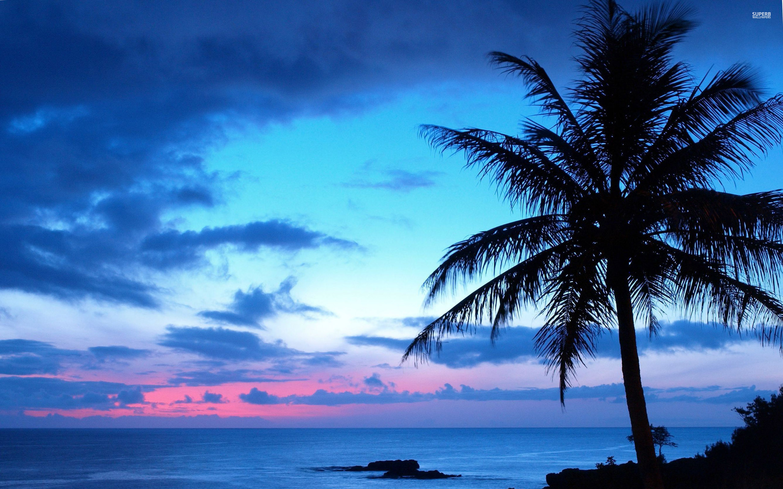 Blue sunset wallpaper 2560x1600