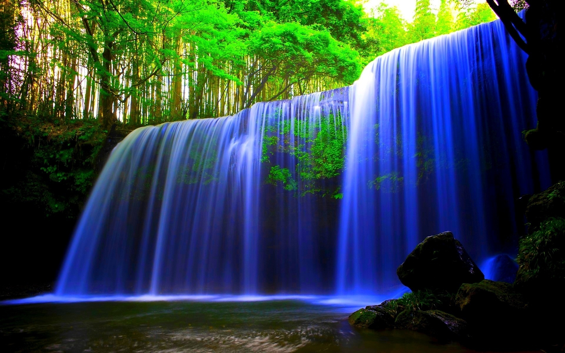 Blue Waterfall Forest Wallpaper in 1920x1200 Widescreen