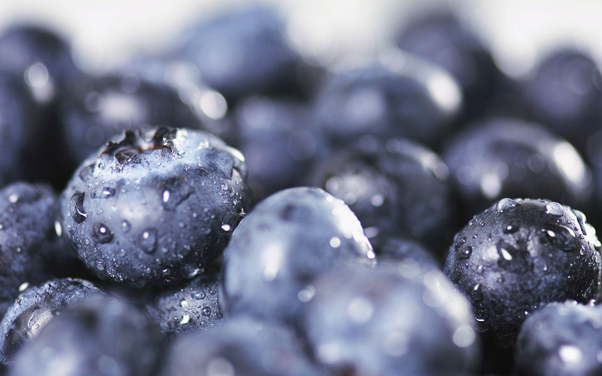 Fresh blueberries HQ Wallpaper