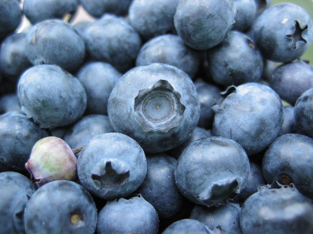 Blueberries Berries