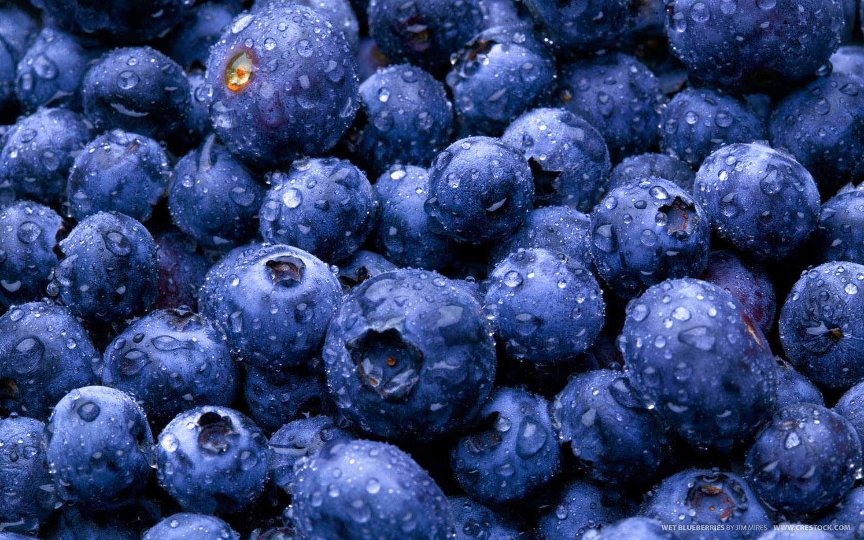 Alaskan Blueberry Slider BG