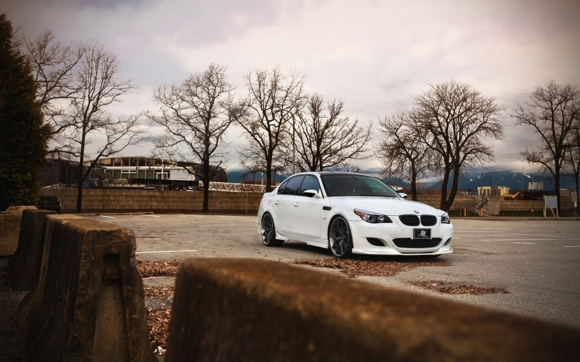 BMW M5 E60 Autumn Photo