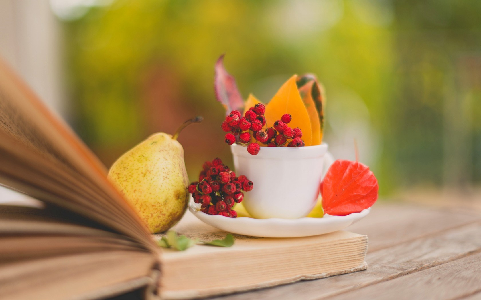 Book Pear Leaves Cup Berries Red Autumn