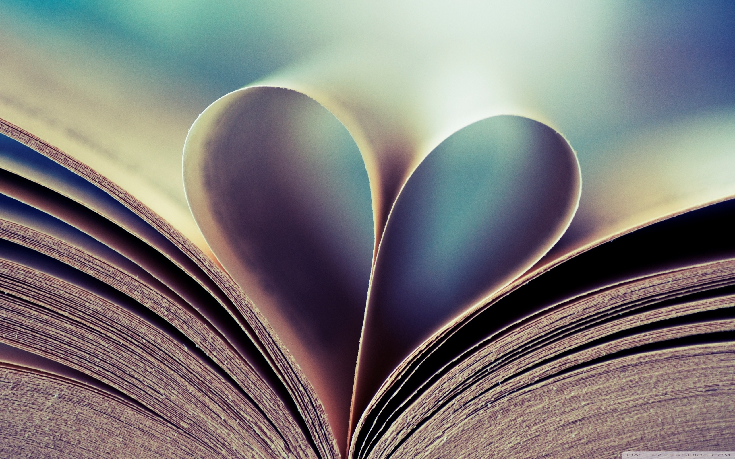 Book Pages Heart Love