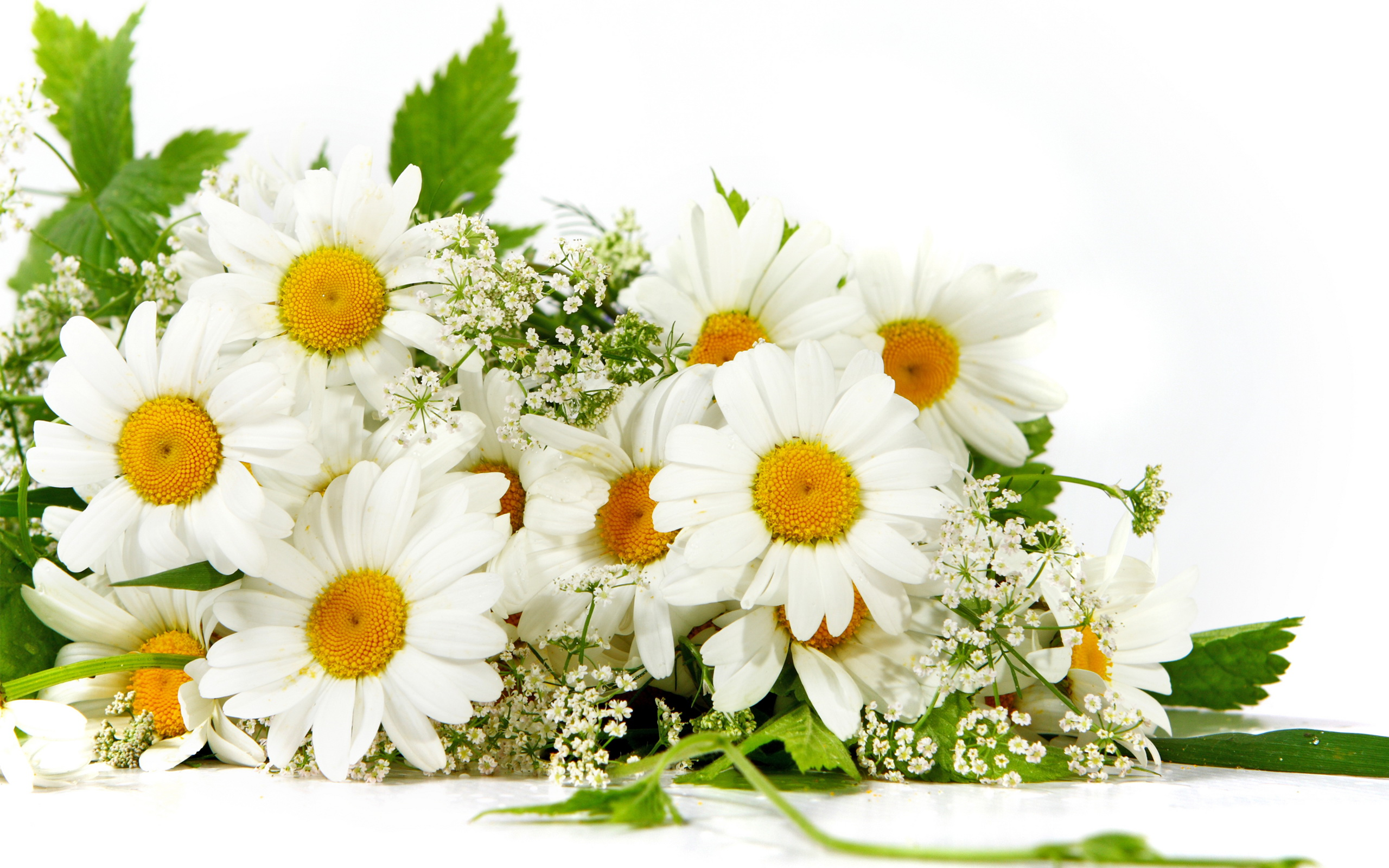 Bouquet Of Flowers Images Background 2 HD Wallpapers
