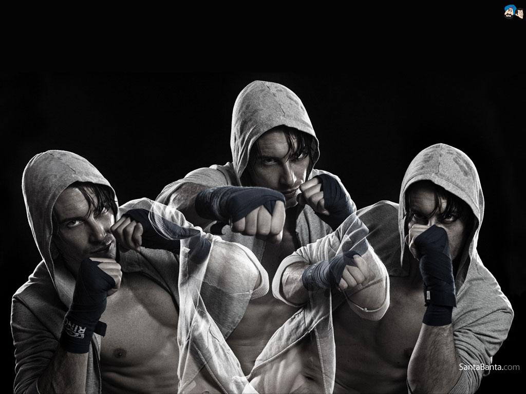 Boxing Audi Logo Boxing