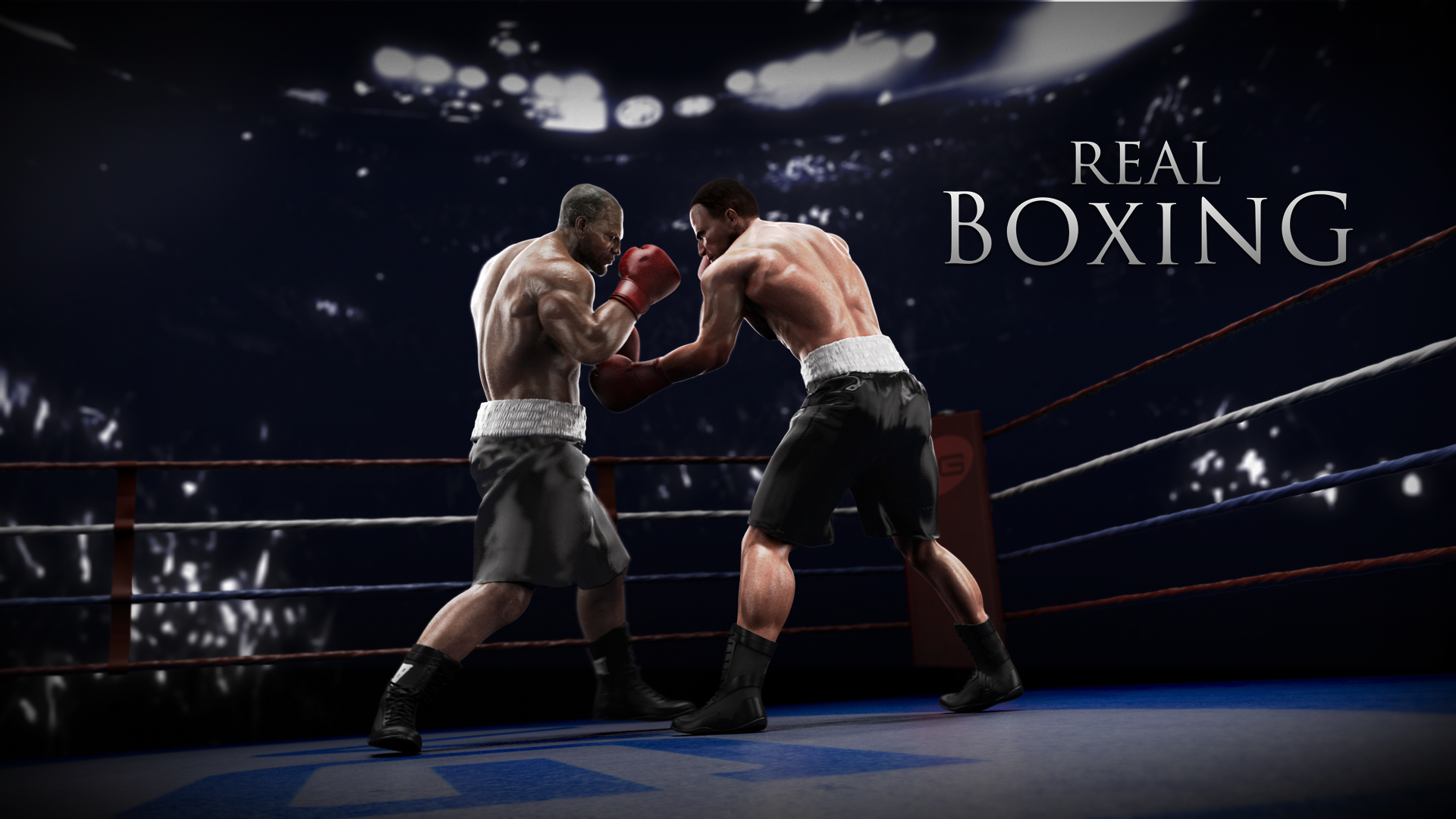 Boxing Wallpaper