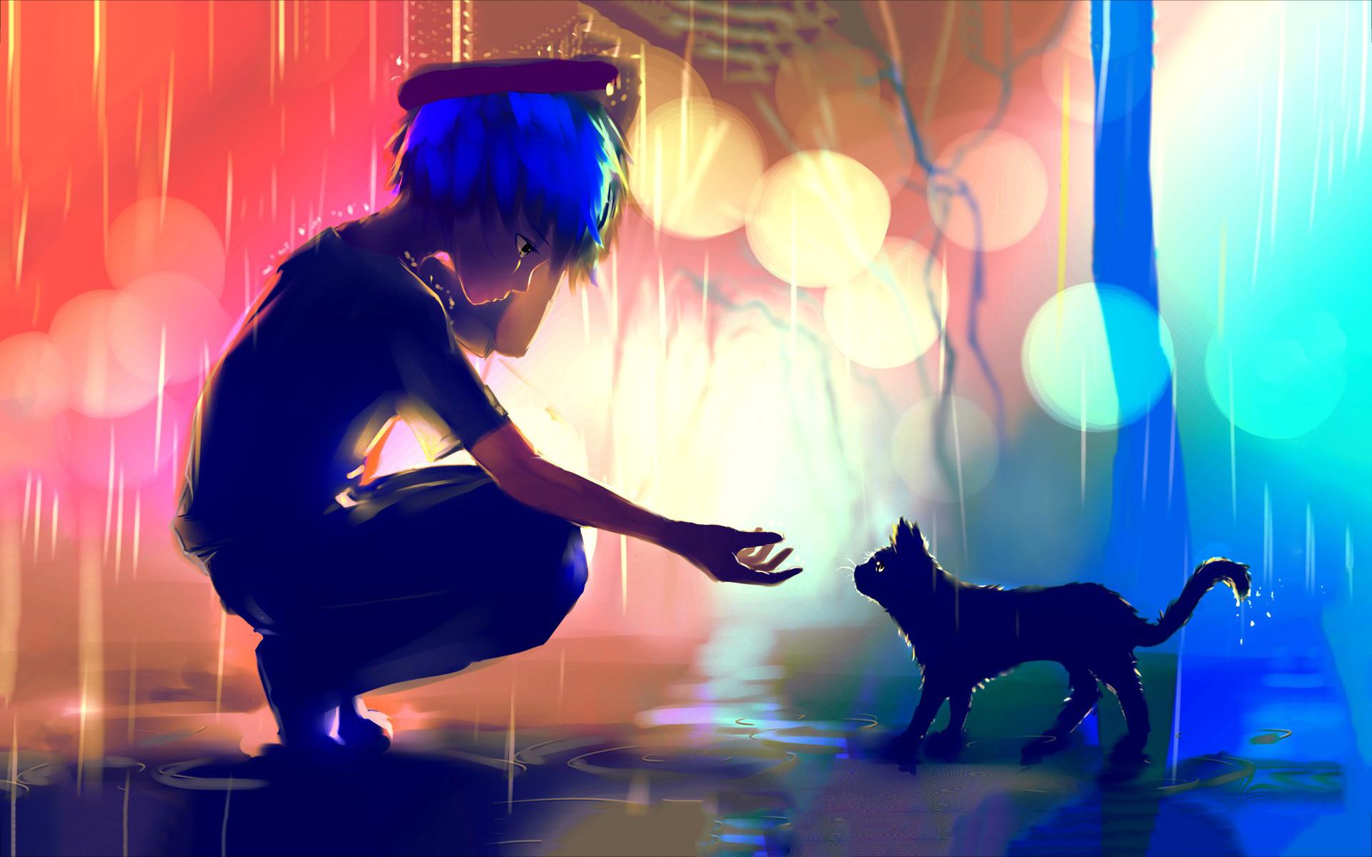 Boy meets cat rain Wallpapers Pictures Photos Images · «
