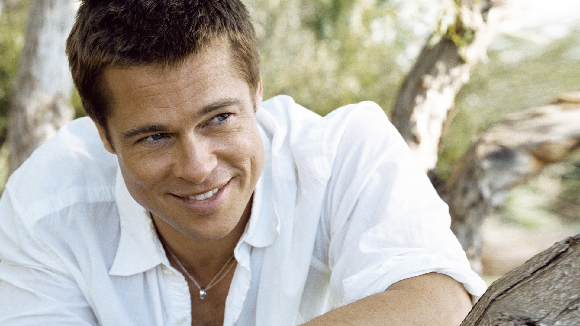 Brad Pitt Hd Background Wallpaper 27